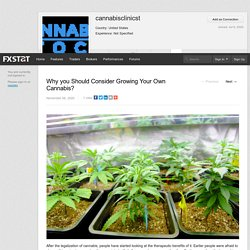 cannabisclinicst's page