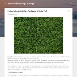 Factors to Consider Before Purchasing Artificial Turf