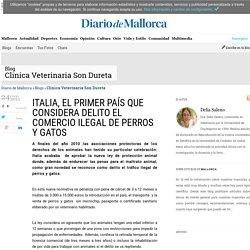 ITALIA, EL PRIMER PAÍS QUE CONSIDERA DELITO EL COMERCIO ILEGAL DE PERROS Y GATOS, Clinica Veterinaria Son Dureta en Diario de Mallorca