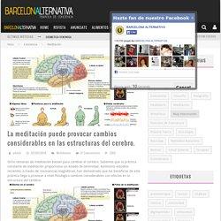 La meditación puede provocar cambios considerables en las estructuras del cerebro.