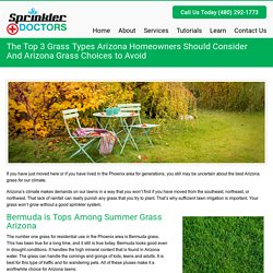 The Top 3 Grass Types Arizona Homeowners Should ConsiderAnd Arizona Grass Choices to Avoid - Sprinkler DoctorsSprinkler Doctors
