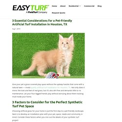 Considerations for Pet-Friendly Artificial Turf Installation in Houston, TX