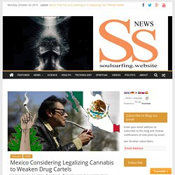 Mexico Considering Legalizing Cannabis to Weaken Drug Cartels