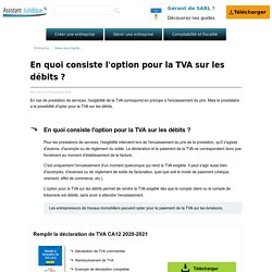 En quoi consiste l'option pour la TVA sur les débits ?
