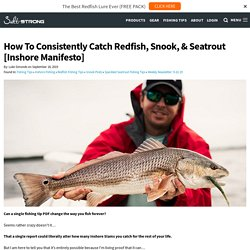 How To Consistently Catch Redfish, Snook, & Seatrout [Inshore Manifesto]