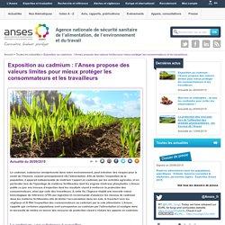 ANSES 26/09/19 Exposition au cadmium : l'Anses propose des valeurs limites pour mieux protéger les consommateurs et les travailleurs