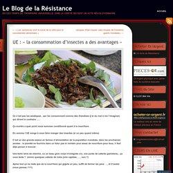 UE : «la consommation d'insectes a des avantages