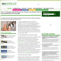 Les 5 raisons qui freinent en France la baisse de la consommation d'énergie