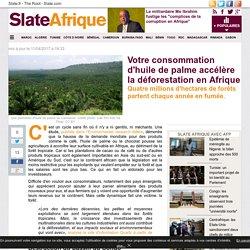 Votre consommation d'huile de palme accélère la déforestation en Afrique
