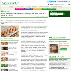 Consommation d'oeufs : l'élevage en batterie n'a plus la cote