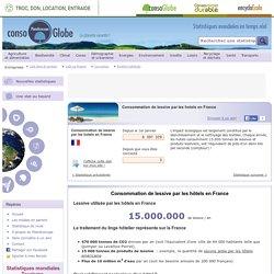 Consommation de lessive par les hotels en France