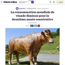 La consommation mondiale de viande diminue pour la 2e année de suite