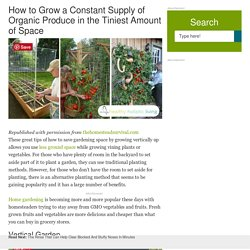 How to Grow a Constant Supply of Organic Produce in the Tiniest Amount of Space
