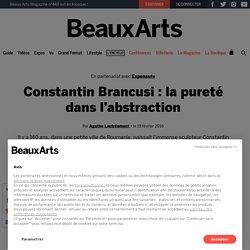 Constantin Brancusi : la pureté dans l'abstraction