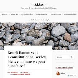 Benoît Hamon veut «constitutionnaliser les biens communs» : pour quoi faire
