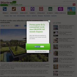 Techos verdes una solución real a la construcción sustentable