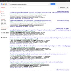 large scale constructed wetlands - Google Scholar