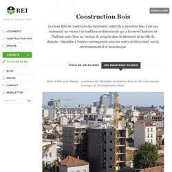 éco-construction bâtiments structure bois: quels avantages?