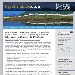 New Pipeline Construction Issues: U.S. Fish and Wildlife Service Considers Allowing Incidental Takes Under the Migratory Bird Treaty Act