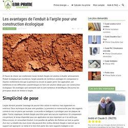 Les avantages de l'enduit à l'argile pour une construction écologique - Energie-Renouvelable.tv