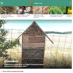 Comment construire un hôtel à insectes pour préserver la biodiversité ?