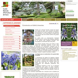 Construire un hôtel à insectes - Jejardine.org, un site de la SNHF