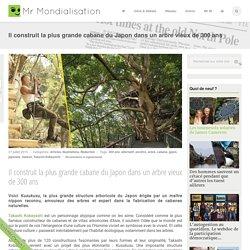 Il construit la plus grande cabane du Japon dans un arbre vieux de 300 ans