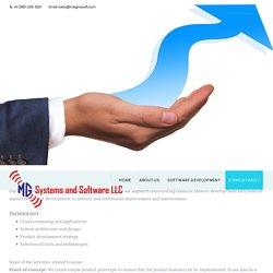 IT Consultancy Services - Megnasoft