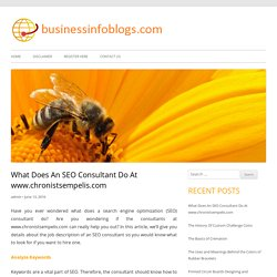 What Does An SEO Consultant Do At www.chronistsempelis.com