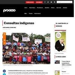 Consultas indígenas