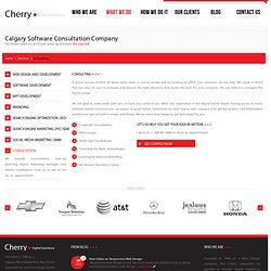 Calgary Software Consultation Company