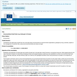 Consultation - Environment - European Commission