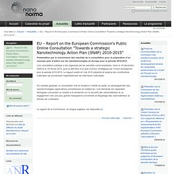 "NANONORMA 03/06/10 EU – Report on the European Commission's Public Online Consultation ""Towards a strategic Nanotechnology Actio"