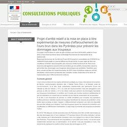 Les consultations publiques du ministère de la Transition écologique et solidaire
