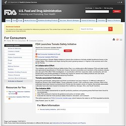 FDA 12/06/07 Tomato Safety Initiative
