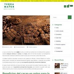 ✔ ¿Por qué consumir cacao en polvo es bueno para tu salud?