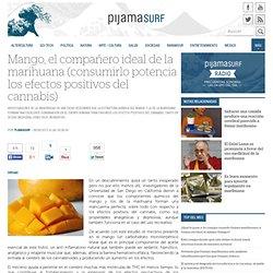 Mango, el compañero ideal de la marihuana (consumirlo potencia los efectos positivos del cannabis)