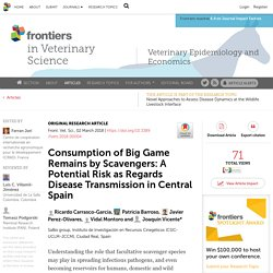 FRONT. VET. SCI 02/03/18 Consumption of Big Game Remains by Scavengers: A Potential Risk as Regards Disease Transmission in Central Spain