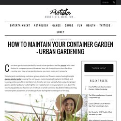 How To Maintain Your Container Garden - Urban Gardening -  Protista * Great lists about everything!