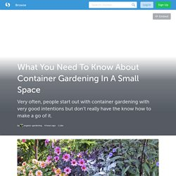 What You Need To Know About Container Gardening In A Small Space (with images) · organic_garden2