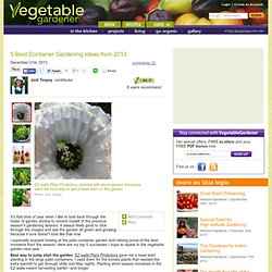 5 Best Container Gardening Ideas From 2013