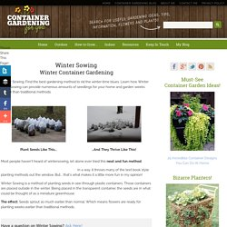 Winter Sowing: Winter Container Gardening, Wintersowing
