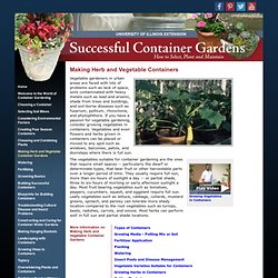 Making Herb and Vegetable Containers - Successful Container Gardens