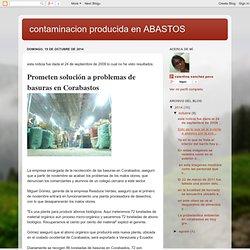 contaminacion producida en ABASTOS