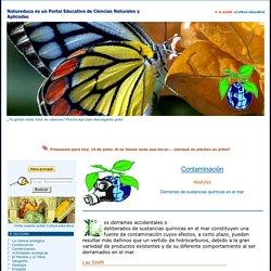 CONTAMINACIÓN - MARINA: Derrames de sustancias químicas en el mar