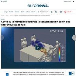 Covid-19 : l'humidité réduirait la contamination selon des chercheurs japonais
