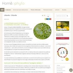 La chrorelle, une plante pour aider à lutter contre la contamination mercurielle