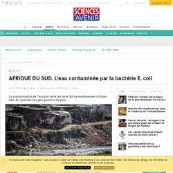 AFRIQUE DU SUD. L'eau contaminée par la bactérie E.coli - Sciencesetavenir.fr