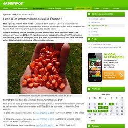 Les OGM contaminent aussi la France !