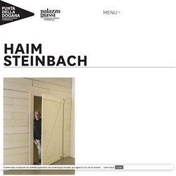 Haim Steinbach– Palazzo Grassi